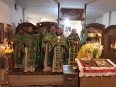 Духовенство Ружинщини приступило до таїнства сповіді.